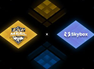 MESL partners with Skybox